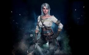 Picture The Witcher 3 Wild Hunt, The Witcher 3 Wild Hunt, CRIS, Zirael, Cirilla Fiona Elen …