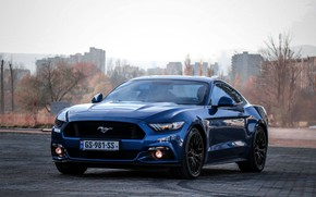 Picture BLUE, MUSTANG, FORD, CAR, LIGHT, WHELLS, GEORGIA, BEST, TBILISI
