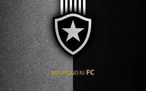 Picture wallpaper, sport, logo, football, Botafogo, Brazilian Serie A