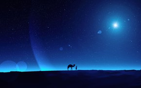Picture the sky, night, people, camel