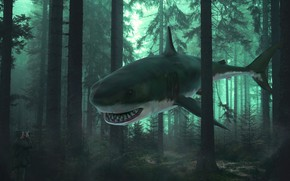 Picture forest, rendering, fantasy, collage, shark, photographer, hallucination, photoart