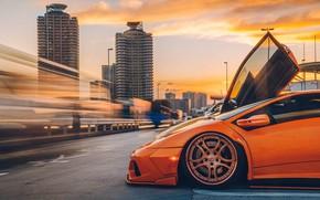 Picture Lamborghini, Diablo, Mark Riccioni, Night Tokyo