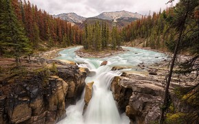 Picture forest, trees, mountains, stones, rocks, waterfall, river, Jasper National Park, Sunwapta Falls, Canadian Rockies