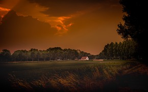 Picture field, night, house