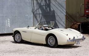 Picture Roadster, The Mans, retro, Austin-Healey 100M