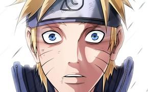 Picture look, Naruto, Naruto, shock, Uzumaki Naruto