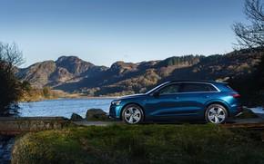 Picture Audi, E-Tron, the pond, 2019, UK version