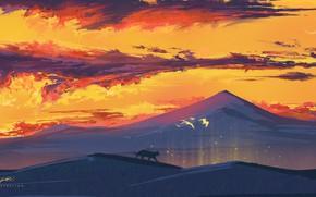 Picture cat, sunset, nature, hills