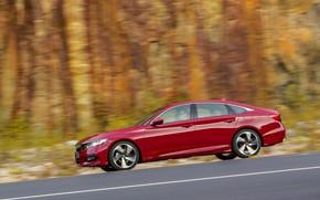 Picture red, speed, profile, Honda, Accord, sedan, 2018, four-door, 2.0T Sport