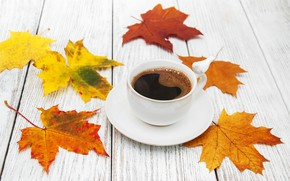 Picture autumn, leaves, wood, autumn, leaves, coffee cup, a Cup of coffee