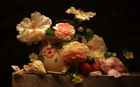Wallpaper flowers, table, roses, petals, shell, vase, black background, still life, plum