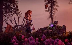Picture girl, flowers, nature, Horizon Zero Dawn