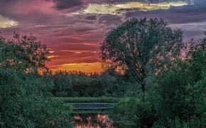 Picture landscape, sunset, nature, Mountains