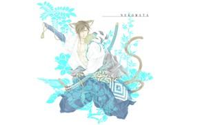 Picture The Era Of Unrest, Sengoku Basara, neko, guy