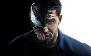 Wallpaper white, background, fiction, black, poster, horror, comic, MARVEL, Tom Hardy, Tom Hardy, Venom, Venom, symbiote