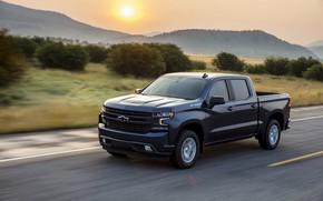 Picture movement, Chevrolet, pickup, shrub, Silverado, dark blue, 2019, RST