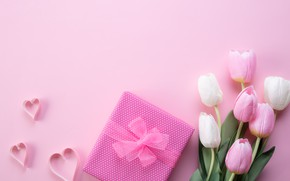 Picture background, pink, gift, bouquet, tulips, congratulations, Siam Pukkato