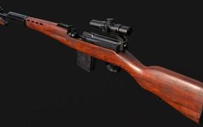 Picture SVT-40, Self-loading rifle Tokarev, Fedor Tokarev