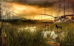 Picture Power lines, Stalker, STALKER, Helicopter, Wolves, Swamp, Sign of radiation