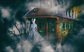 Wallpaper horror, fantasy, Night, train