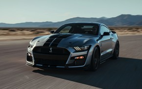Picture speed, Mustang, Ford, Shelby, GT500, 2019, gray-silver