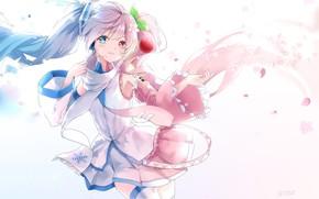 Picture girl, Hatsune Miku, Vocaloid, Vocaloid, Hatsune Miku