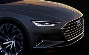 Picture Concept, Audi, coupe, Coupe, the front part, 2014, Prologue