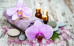 Picture stones, oil, towel, orchids, Spa, salt, Olena Rudo