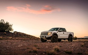 Picture Ford, Raptor, Sunset, White