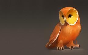 Picture owl, orange, art, fruit, art, Alexander Khitrov, GaudiBuendia