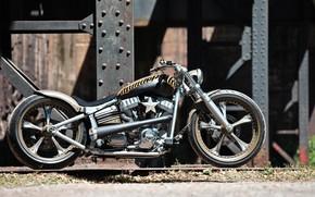 Picture Harley Davidson, Bike, Harley-Davidson, Custom, Thunderbike, By Thunderbike