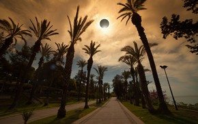 Wallpaper road, sea, the sky, palm trees, lights, Eclipse
