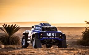 Picture Sand, Mini, Sport, Desert, Machine, Car, 300, Rally, Dakar, Dakar, Rally, Buggy, Buggy, X-Raid Team, …