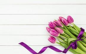 Picture flowers, bouquet, tape, tulips, flowers, tulips, purple