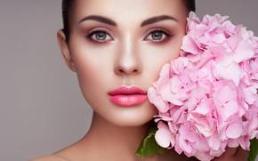 Picture eyes, look, girl, flowers, face, sweetheart, hydrangea, Oleg Gekman