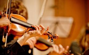 Picture Music, Violin, Concert, Оркестр