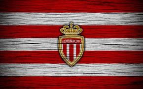 Picture wallpaper, sport, logo, football, Ligue 1, AS Monaco