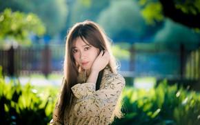 Picture look, girl, sweetheart, hair, Asian, bokeh