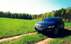 Picture field, auto, forest, the sun, volkswagen, primer, country road, passat