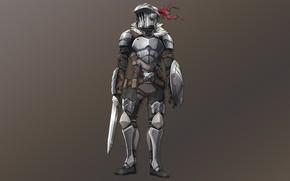 Picture Armor, Warrior, Anime, Art, The killer of goblins, Goblin slayer
