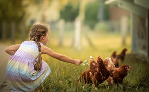 Picture girl, bokeh, braids, chickens