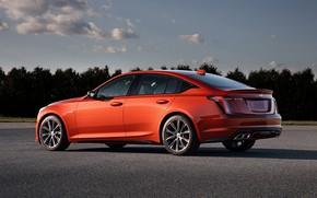 Picture Cadillac, Parking, sedan, 2020, 2019, CT5-V