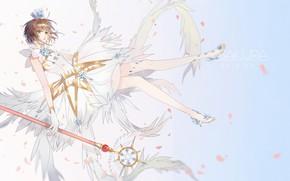 Picture girl, wings, Card Captor Sakura, Sakura - collector cards