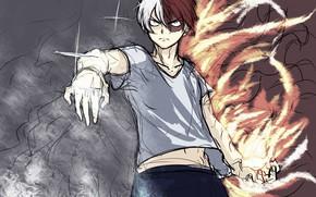 Picture My Hero Academia, Boku No Hero Academy, Todoroki Shoto, My Hero Academy