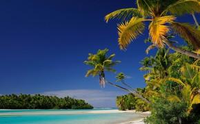 Picture beach, Islands, tropics, palm trees, Laguna, Oceania, Cook Islands, Aitutaki atoll, Tapuaetai