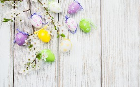 Picture flowers, eggs, colorful, Easter, happy, wood, blossom, flowers, spring, Easter, eggs, decoration