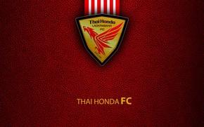 Picture wallpaper, sport, logo, football, Thai Honda