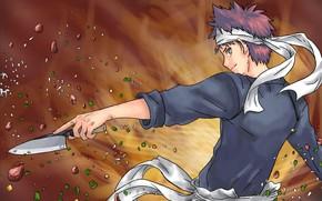 Picture anime, art, knife, cook, guy, Shokugeki no Soma, Kitchen Catfish
