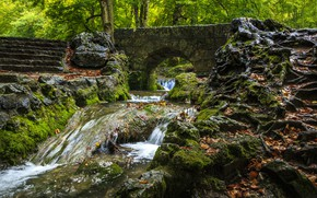 Picture Bridge, Trees, River, Forest, Ladder, Stones, Moss