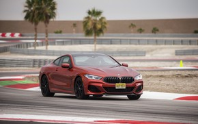 Picture coupe, track, BMW, 2018, 8-Series, 2019, dark orange, M850i xDrive, Eight, G15